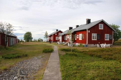 Stora_fjaderagg_garden